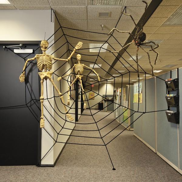 Riesige behaarte Spinne mit Gigant-Spinnennetz ca. 3,58 Meter Durchmesser