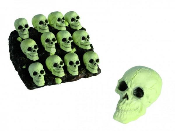 Halloween Totenkopf Totenschädel nachtleuchtend