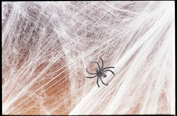 Halloween Spinnennetz 500g Spinnweben mit 6 Spinnen