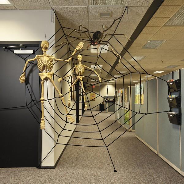 Riesiges Spinnennetz ca. 3,58 Meter Durchmesser